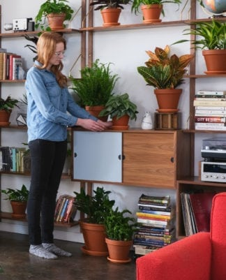 Advice from Plant Mom: Beginner's Guide to Houseplants