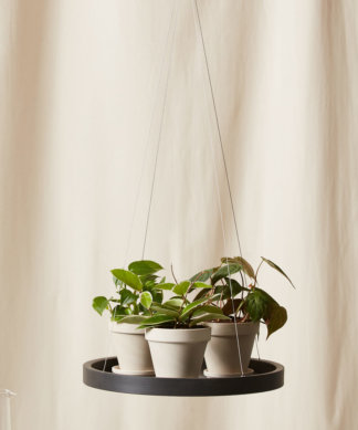 Buy Bloomscape Hanging Saucer