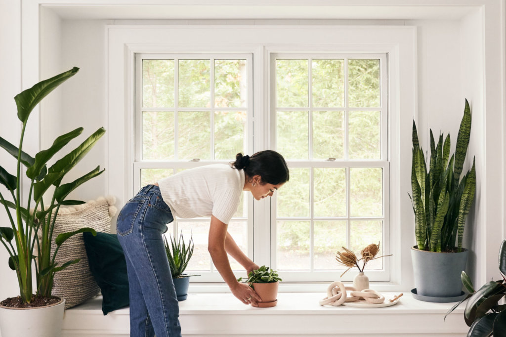 Woman placing a plant on a windowsill