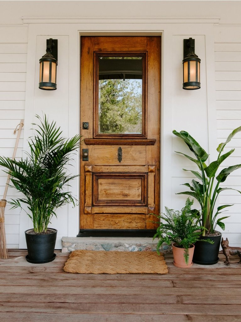 Shop Large and XL plants. Bird of Paradise and Palm plants on either side of front door.